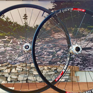 DT SWISS XM 481 from LifeCycles.jpg