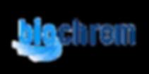 img-logo-biochrom.png