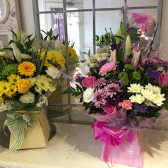 Flower box pinks or yellows £40