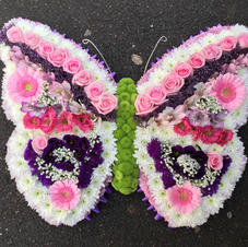 Butterfly call for price