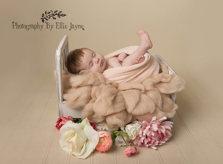 Newborn Photoshoots! All you need to know.