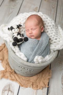 ashurst baby photography