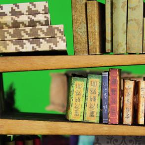 3 - Bookshelf Scene