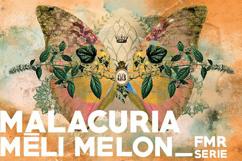 Meli Melon
