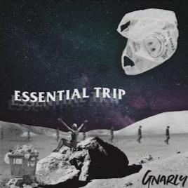 Essential Trip EP