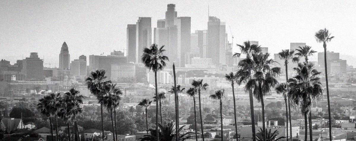LosAngeles_with_palms_Adobe.jpg