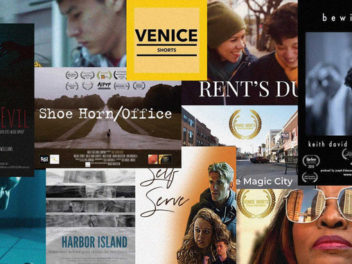 Venice Shorts Winners