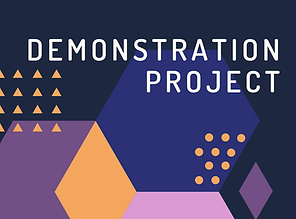 Demonstration Project.png