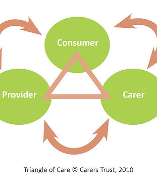 Triangle of Care pic.jpg