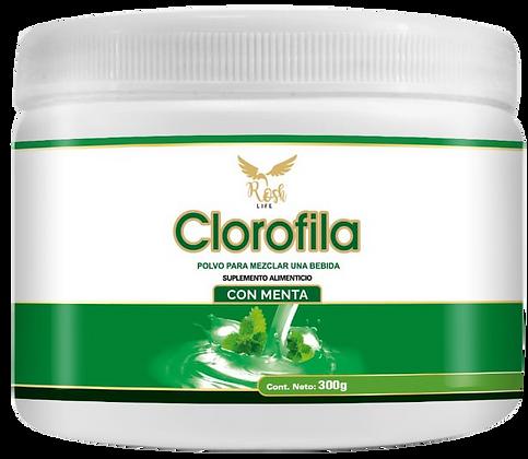 Clorofila en polvo