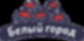 лого БГ.png