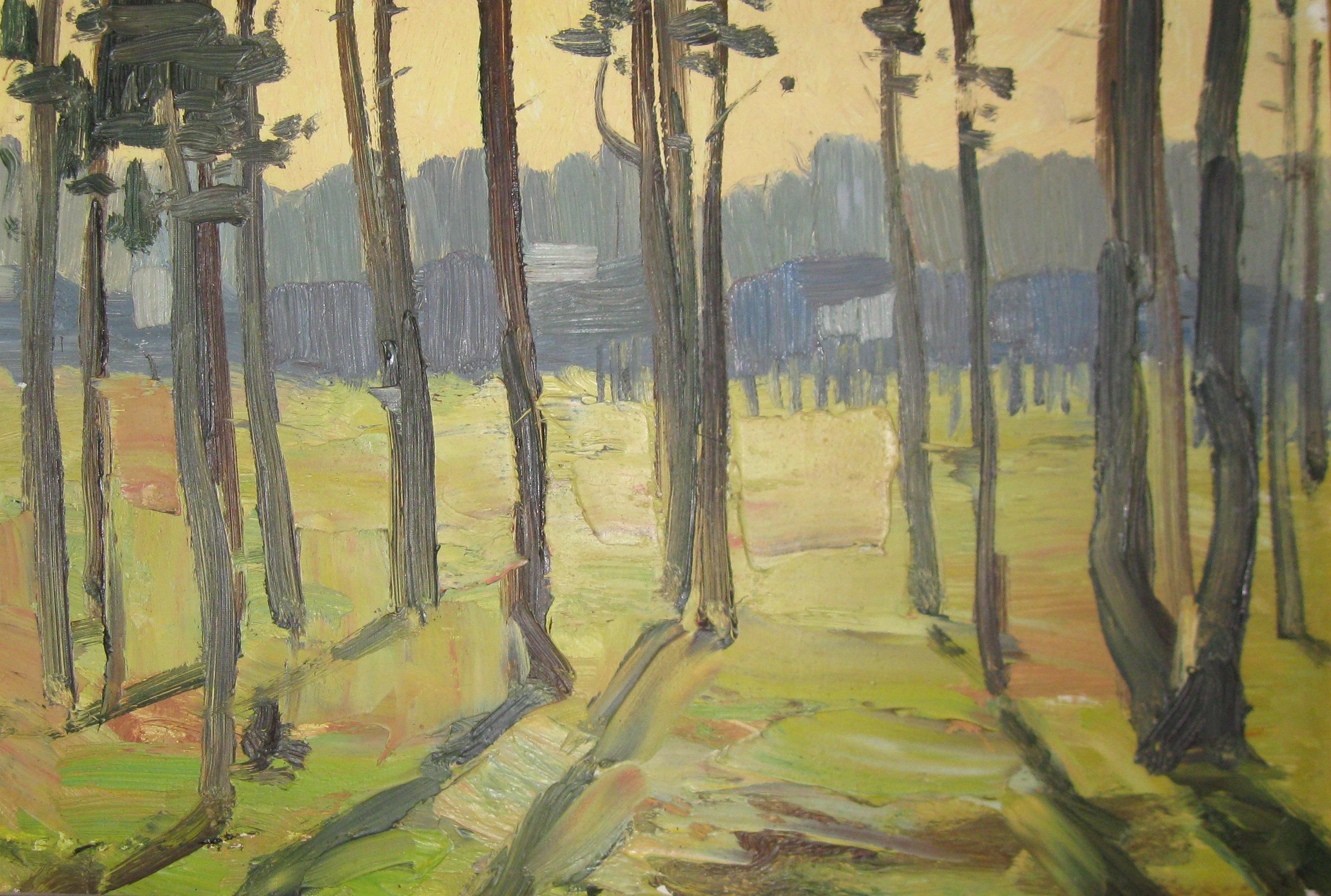 2 Калинников А.В. 1951г. Вечерние тени х.м.44х69 1999(1).jpg
