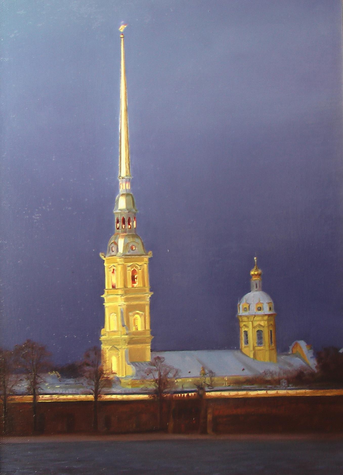 Петропавловский собор ночью.jpg
