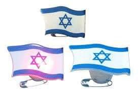 סיכת דגל ישראל