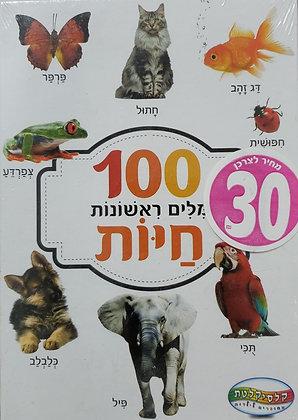 100 מלים ראשונות חיות כרטיסיות
