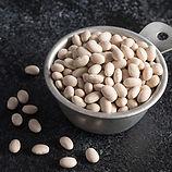 Navy beans.jpg