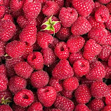 Raspberries.jpeg