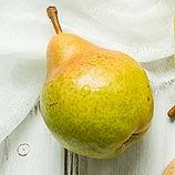 Soft pear.jpg