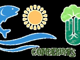 Reunião ordinária do COMDERUPES