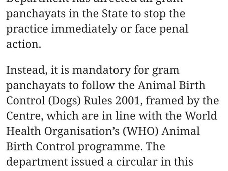 Implementation of Animal Birth Control and ARV at all CMCs and Gram Panchayats