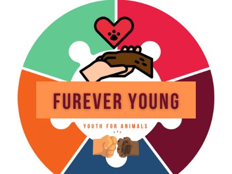 Youth Brigade - #FurEverYoung