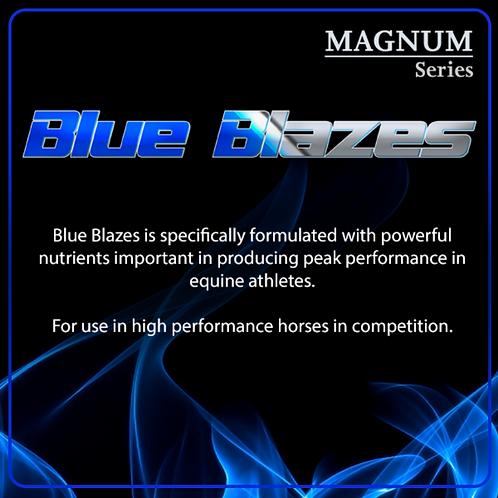 Blue Blazes for Horses