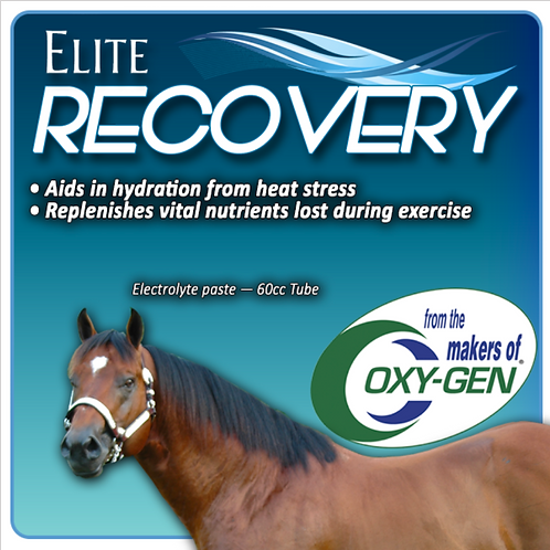 Elite Recovery for Horses