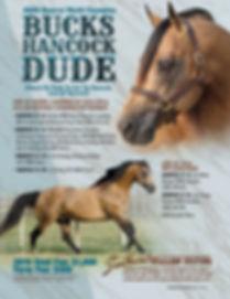 Bucks Hancock Dude.jpg