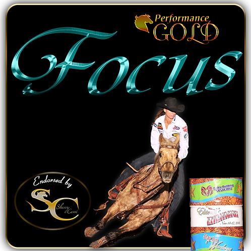 Performance Gold FOCUS for Horses