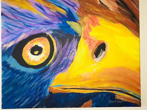 Acrylic Painted Eagles Eye On Canvas