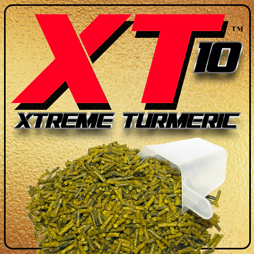 XT10 Xtreme Turmeric for Horses