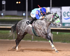 HAWKEYE - Harris County Stakes -  04-20-