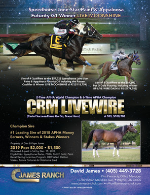 CRM Livewire flyers 10.31.18.jpg
