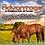 Thumbnail: ADVANTAGE for Horses