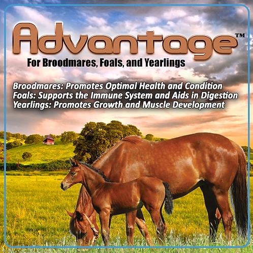 ADVANTAGE for Horses