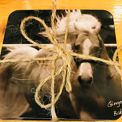 Horse Coasters By Ginger Baker