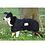 Thumbnail: Therapeutic MESH Dog Blanket