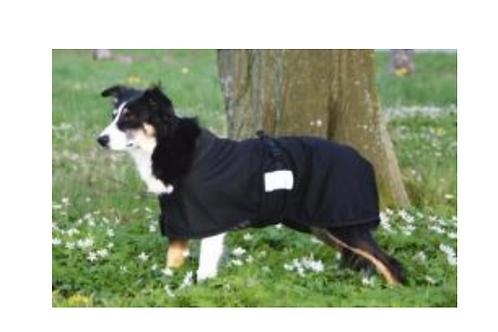 Therapeutic MESH Dog Blanket