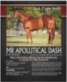 Mr Apollitical Dash.jpg