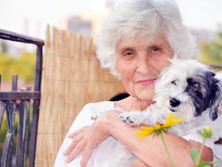 Beneficios de las mascotas en personas mayores
