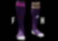 Chaussettes F-H 2.png