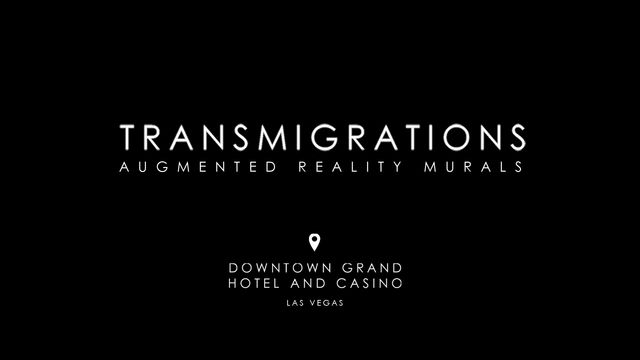 Video of the second wall (Transmigrations II)