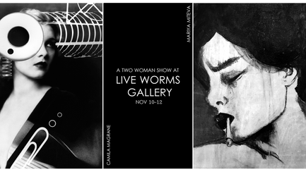 Live Worms Gallery Show! (Nov.10-12)