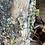 Thumbnail: Gerroa Rockshelf
