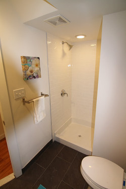 Emerick St. Lower Level Bathroom.jpg