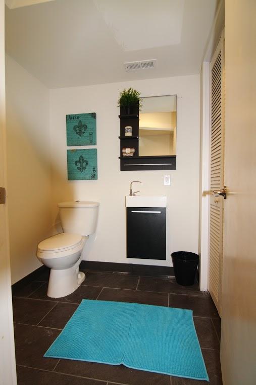 Emerick St. Lower Level Bathroom 2.jpg