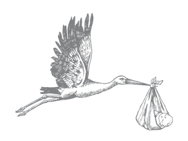 Stork_web.png