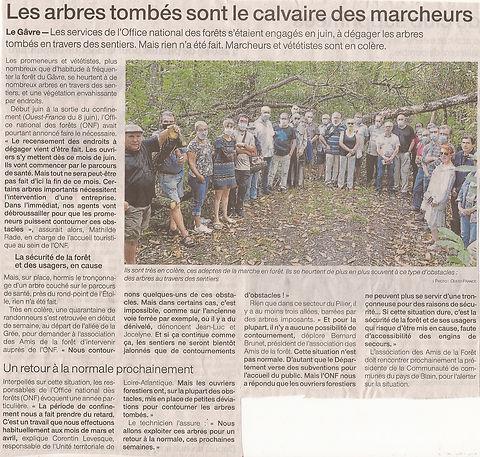 Article_arbres_tombés_26_septembre_2020