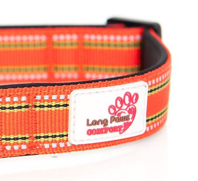 Long Paws Lifetime Guarantee