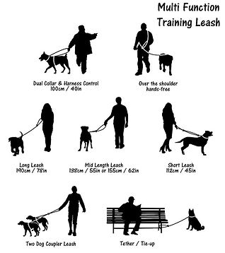 Multi Leash_Draft_13-01-small.jpg